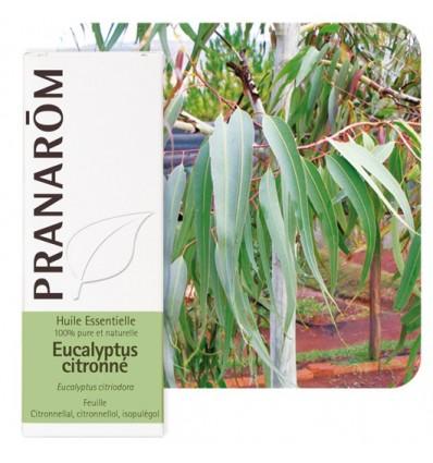 Bio Vietnámi eukaliptusz illóolaj