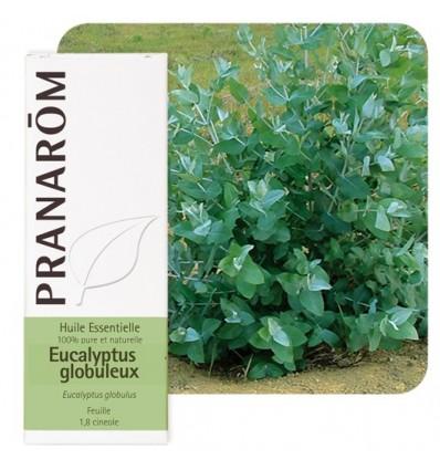 Bio Tasmániai eukaliptusz illóolaj